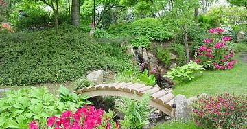 Садовые затеи умелых фантазеров