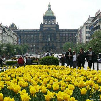 Туристические достопримечательности Кракова, Польша