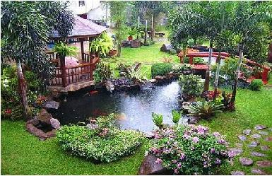 Как гармонично оформить участок возле загородного дома?