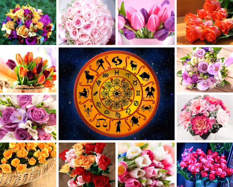 Какие цветы любят женщины по гороскопу? Как выбрать букет девушке по знаку зодиака?